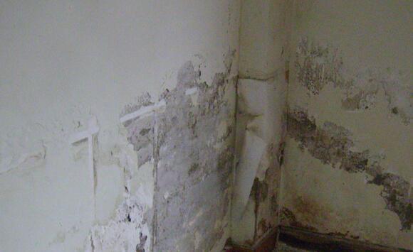 旧墙换新颜 墙面涂装翻新事项五要点必可知